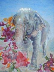 Kinder – Projekt:  Die Elefanten aus den Dschungeln Asiens mit Schülerinnen und Schülern der Grundschule Annweiler